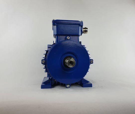 Elektrimootor 0,55kW/700 p/min MS 90L-8 B3; IE1; IP55; 230/400V