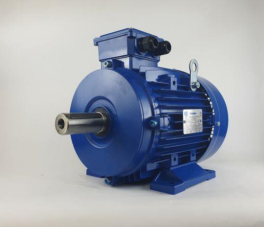 Elektrimootor 2,2kW/700 p/min MS 132S-8 B3; IE1; IP55; 230/400V